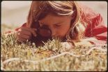 800px-GIRL_USES_A_MAGNIFYING_GLASS_TO_STUDY_PLANT_LIFE_IN_THE_TUNDRA_OF_THE_ROCKY_MOUNTAINS._THE_DENVER_PTA_SPONSORED_A..._-_NARA_-_543740